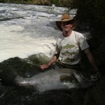 50kg Nile perch caught by J.E.P.R. at Murchison Falls, Uganda.