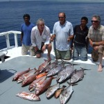 Good mornings catch of dogtooth tuna, rose jobfish & amberjack