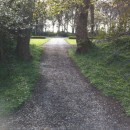 Path to centre
