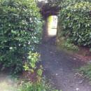 Rath path